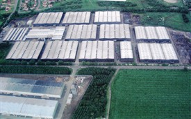 Photo:The bonded warehouses, c. 2005.